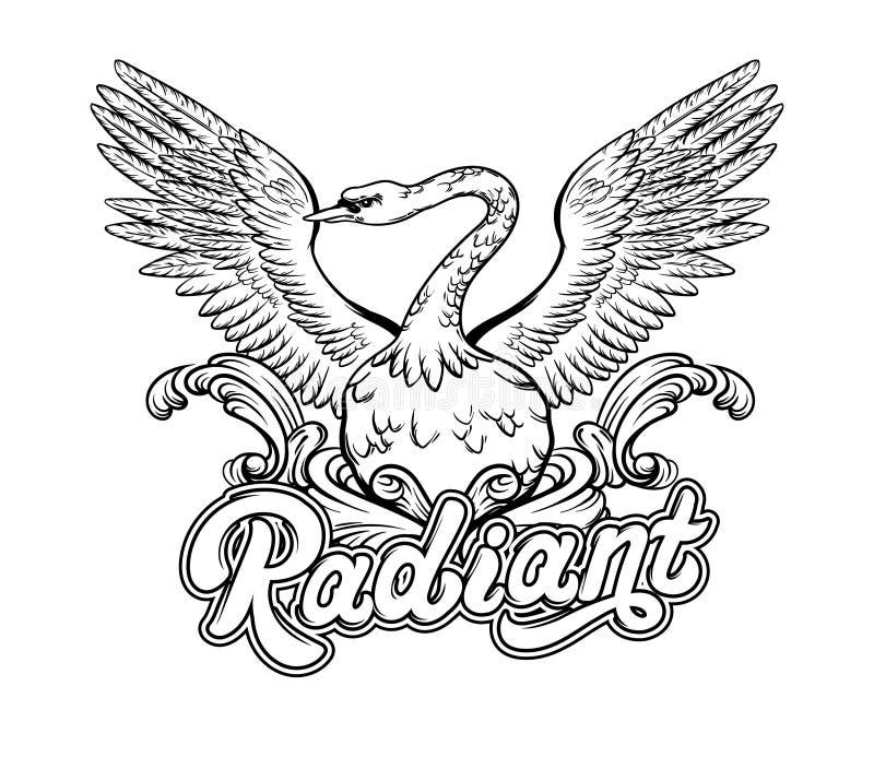 излучающе Иллюстрация вектора нарисованная рукой лебедя Рукописная литерность иллюстрация штока