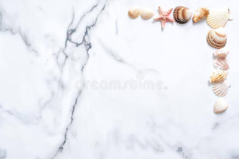 измените лето иллюстрации цветастого состава цветов легкое для того чтобы vector Рамка сделанная раковин моря на мраморной предпо стоковое фото rf