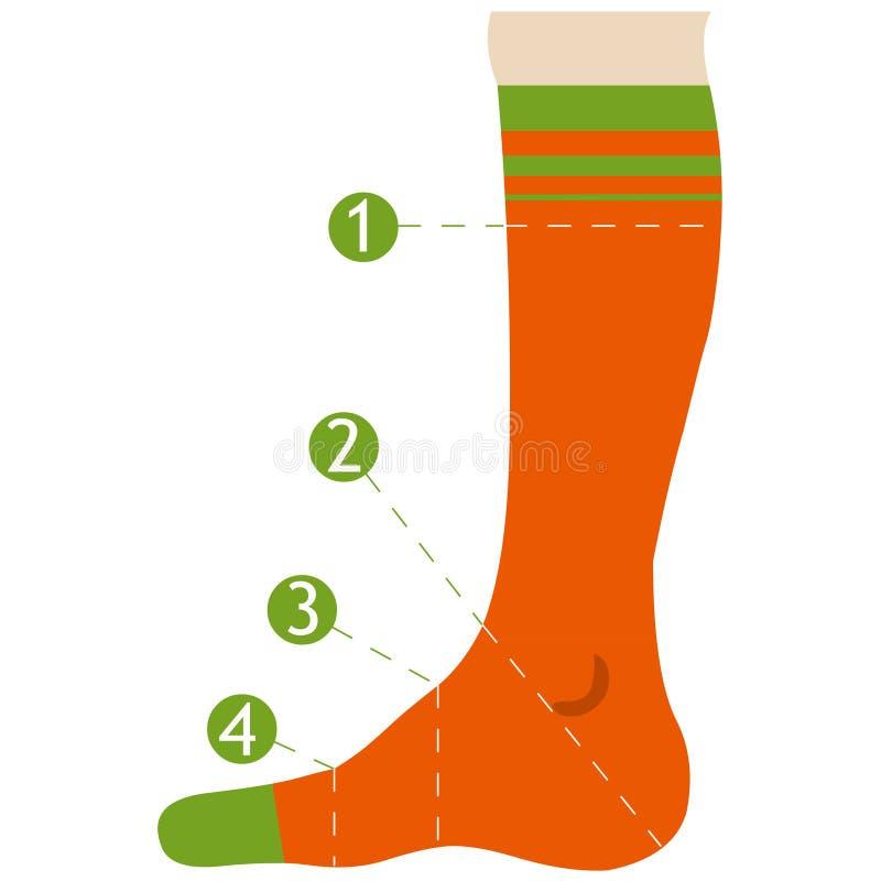 Измерения для носок Иллюстрация вектора размера носка плоская бесплатная иллюстрация