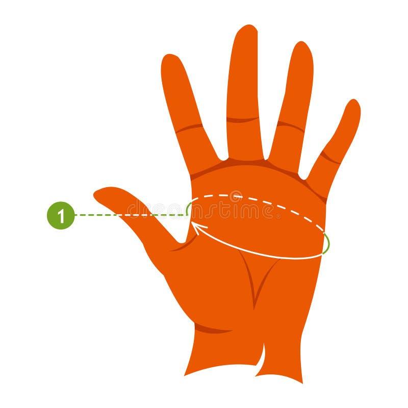 Измерения для mittens, перчаток и перчаток Женская рука Инфографика иллюстрация вектора