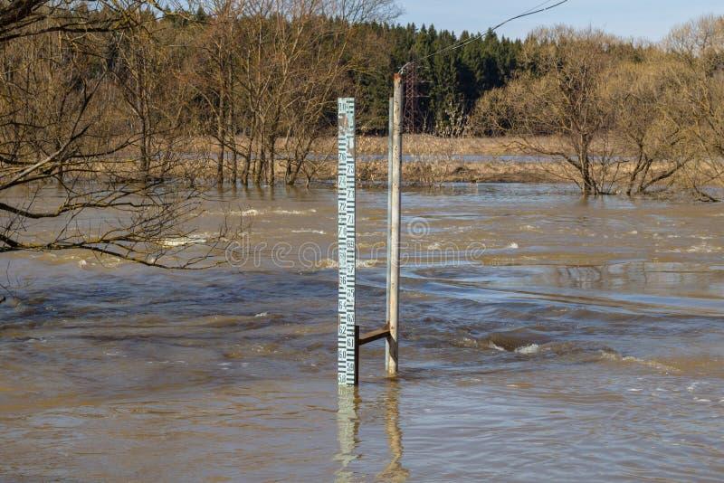 Измеряющ уровень воды во время прилива на реке весной стоковые фотографии rf