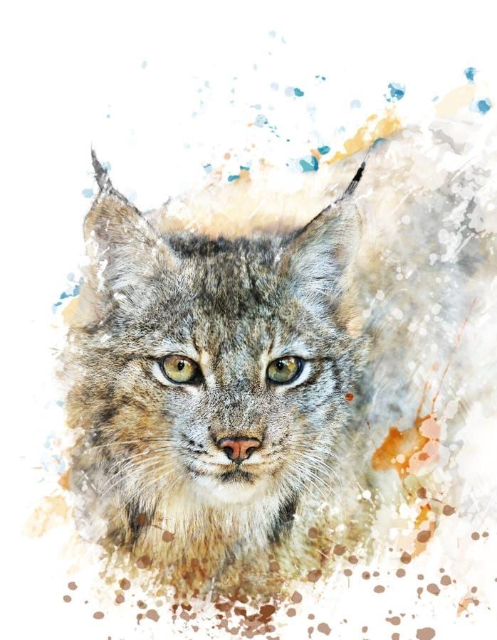 Изображение акварели рыся иллюстрация штока