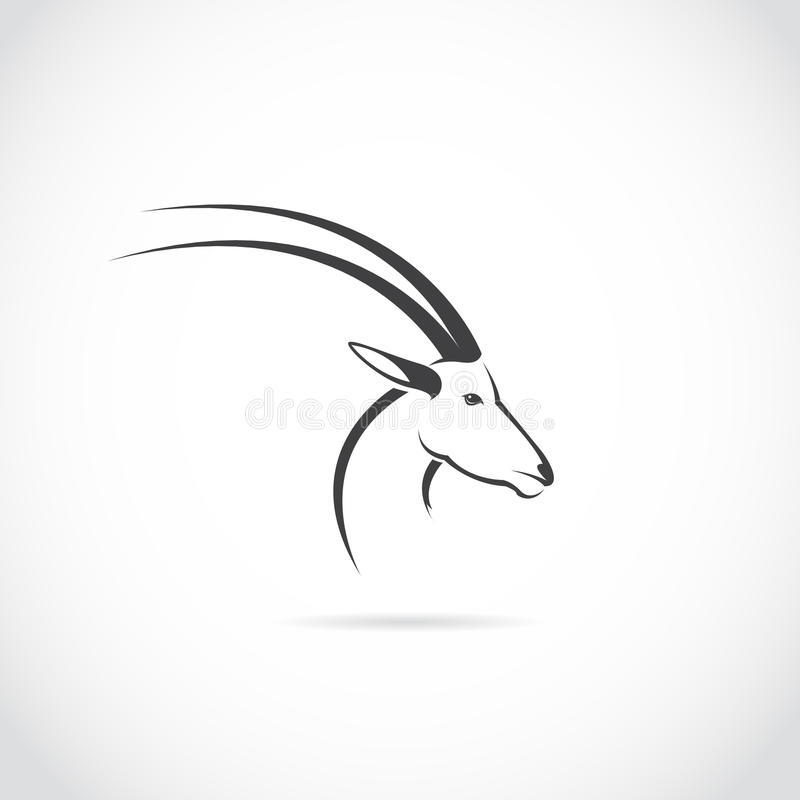 Изображение вектора головы оленей (импала) иллюстрация штока