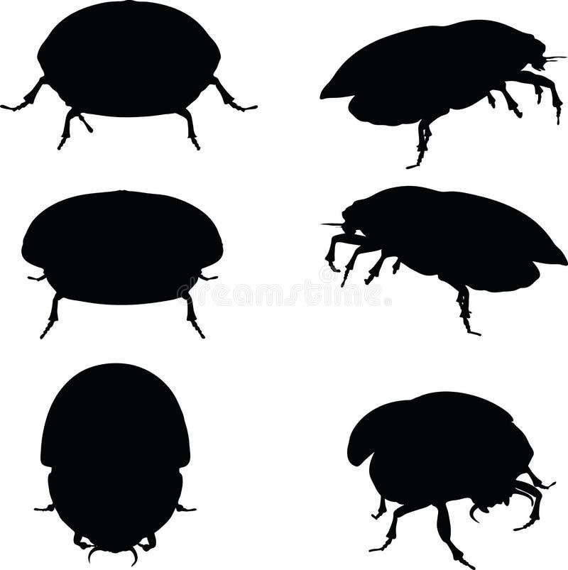 Изображение вектора - прослушивайте силуэт скарабея атакуя на белой предпосылке иллюстрация вектора