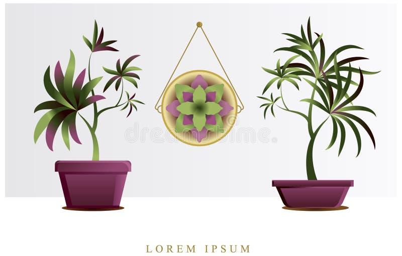 Изображение вектора цветков и заводов в баках, ikebana иллюстрация вектора