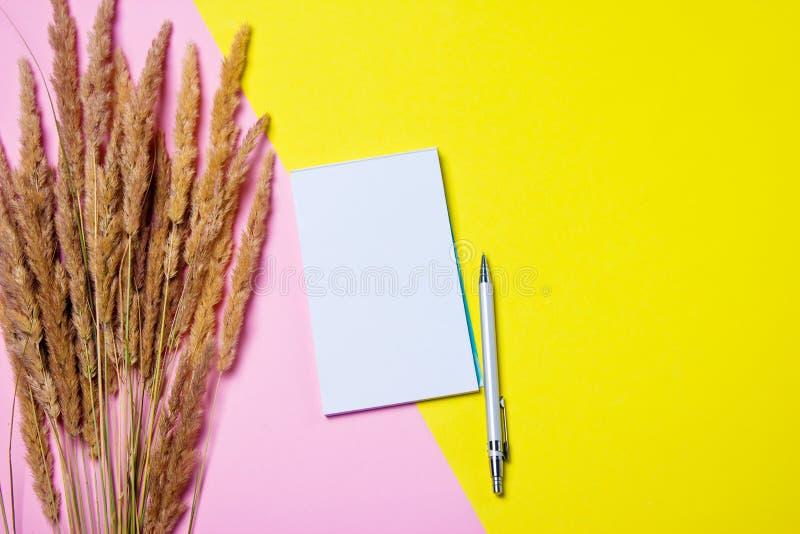 Изображение взгляда сверху плоское положенное с пустой страницей блокнота и ручка на покрашенной поверхности Желтая и розовая пре стоковое фото