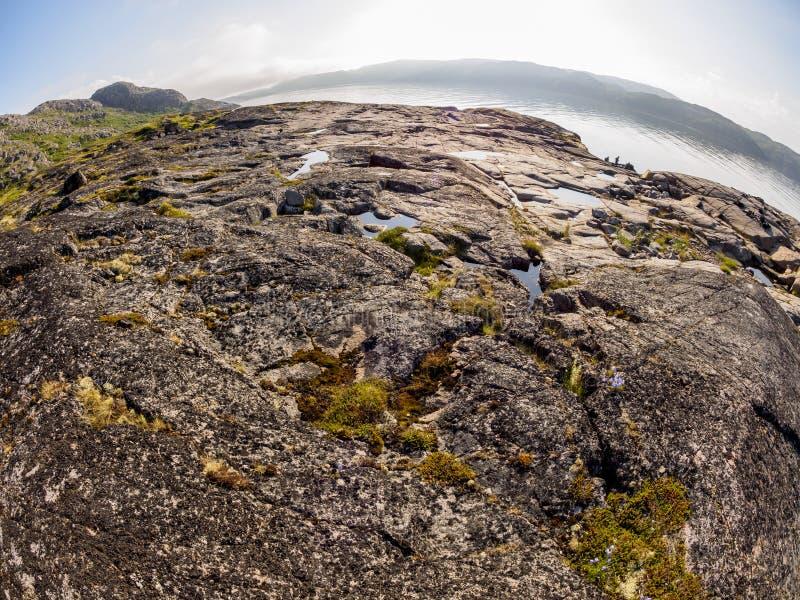 Изображение глаза рыб береговой линии моря Barents северным приполюсным летом Северный океан, полуостров Kola, Россия стоковые изображения