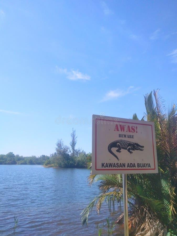 изображение доски знака крокодила и озера стоковые фотографии rf
