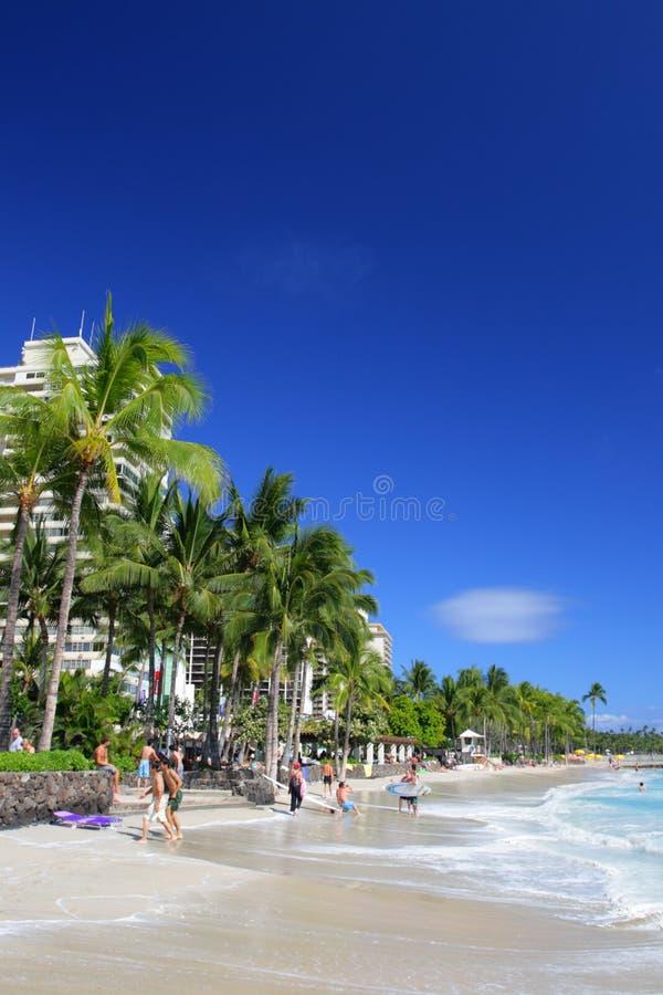 Изображение запаса пляжа Waikiki, Гонолулу, Оаху, Гаваи стоковые фотографии rf