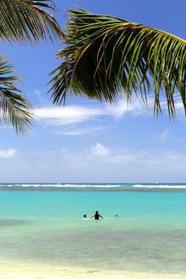 Изображение запаса пляжа Waikiki, Гонолулу, Оаху, Гаваи стоковое изображение