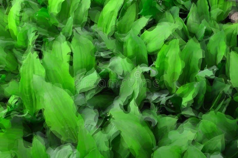 Изображение зеленой предпосылки от листьев lat ландыша Majalis Convallaria иллюстрация вектора