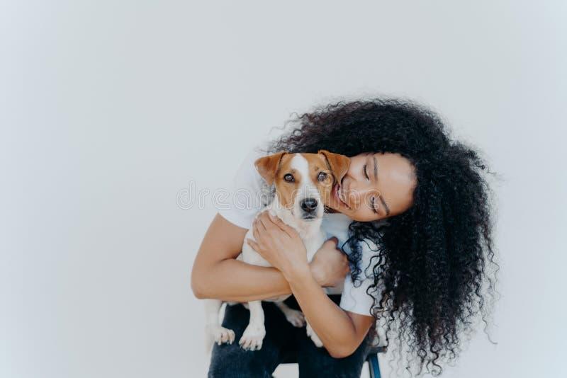 Изображение игрышной красивой женщины с афроволосым стилем, радостно улыбается, держит домашнее животное, носит собаку к ветерана стоковая фотография rf