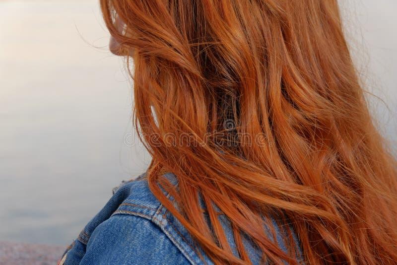 Изображение крупного плана вид сзади женщины имбиря с волосами стоковая фотография