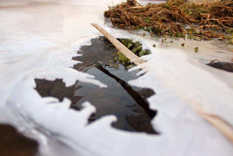 Изображение льда с водой стоковое фото