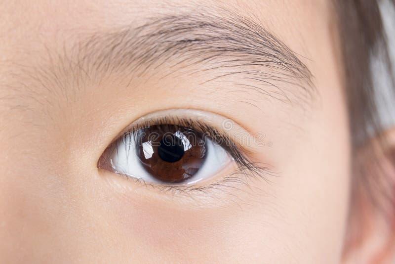 Изображение макроса человеческого глаза стоковые изображения rf