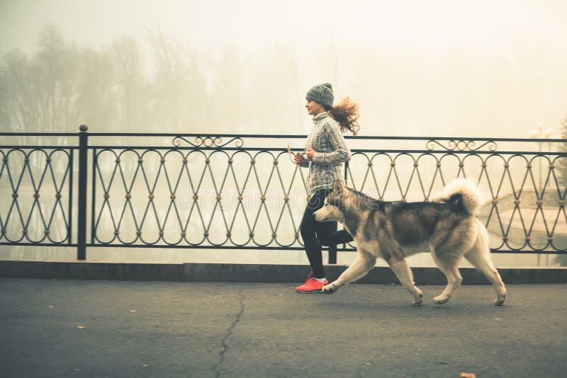 Изображение маленькой девочки бежать с ее собакой, маламутом стоковое изображение rf