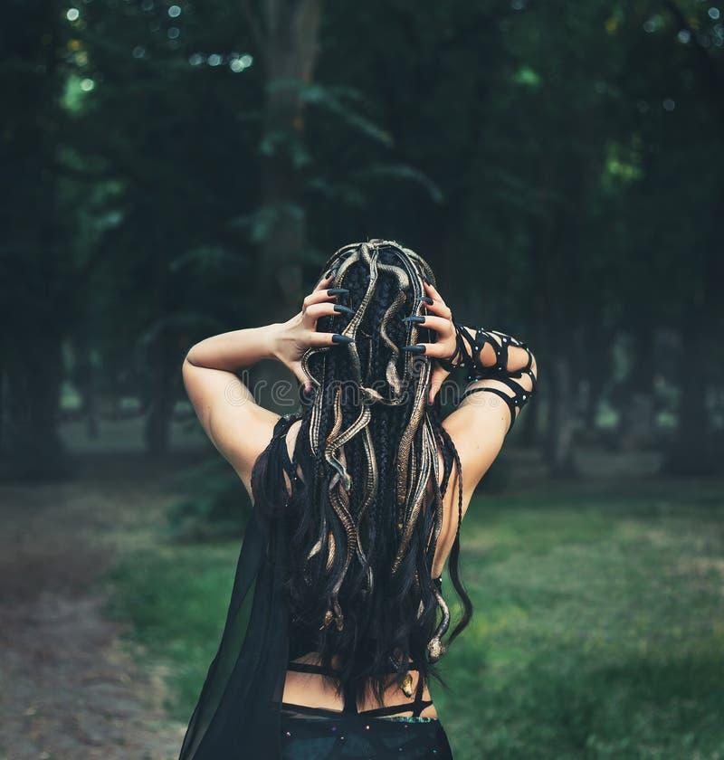 Изображение Медузы Gorgon, волос оплетки и золотых змеек, портрета конца-вверх от задней части без стороны Женщина показывает стоковые фотографии rf
