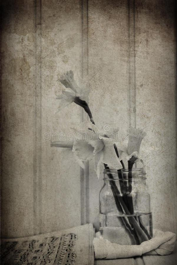 Изображение натюрморта весны цветет с винтажным фильтром e текстуры стоковое фото rf