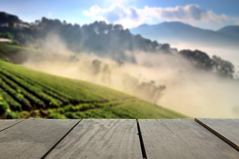 Изображение нерезкости красивого ландшафта и свежая клубника обрабатывают землю в сезоне зимы стоковая фотография