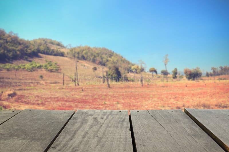 Изображение нерезкости обезлесения земледелия в горе стоковое фото rf