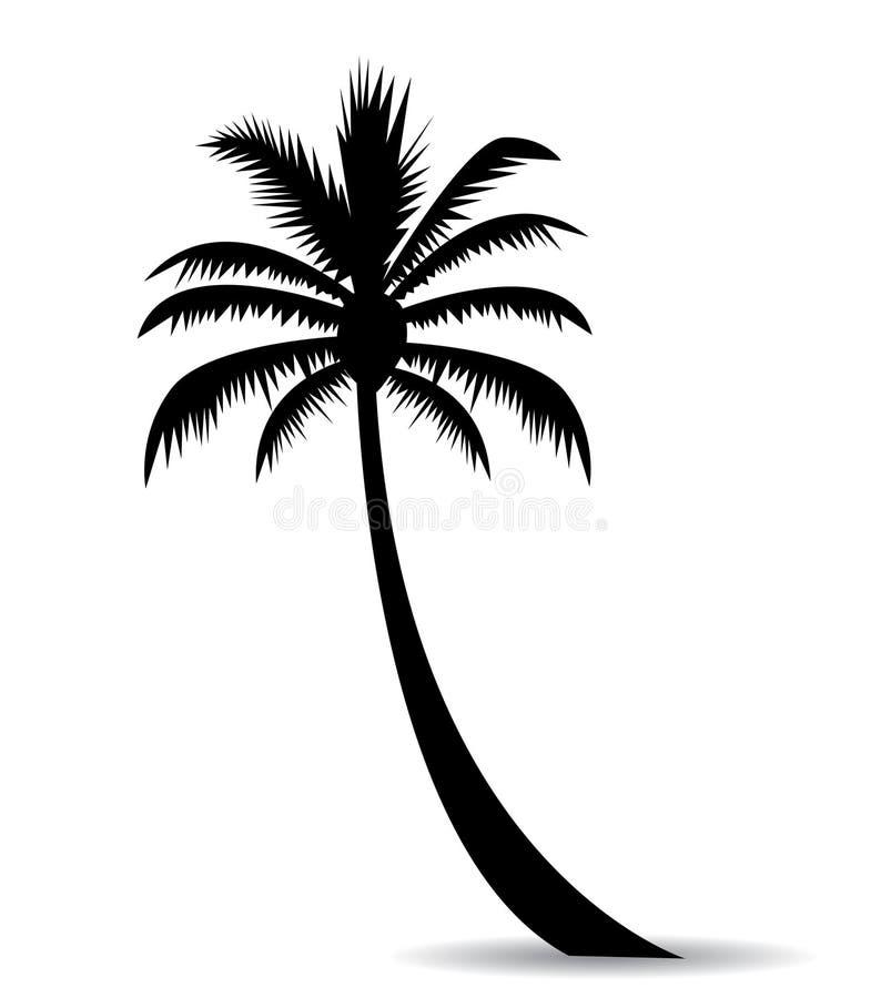 Изображение пальмы бесплатная иллюстрация