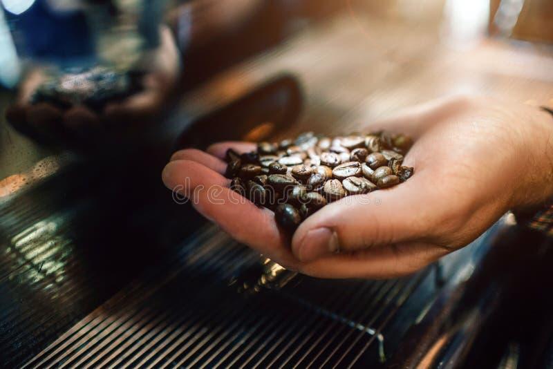 Изображение руки человека держа зажаренные в духовке кофейные зерна в руке Он делает его на машине кофе стоковые фотографии rf