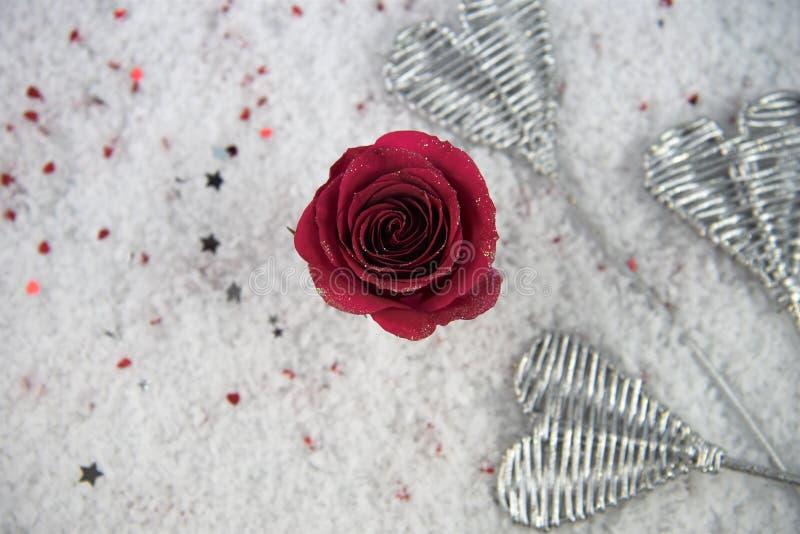 Изображение фотографии сезона зимы рождества или валентинки романтичное красной розы цветет в снеге с лепестками яркого блеска стоковые фото