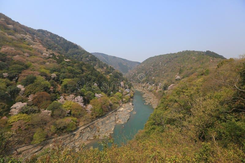 Изображение Arashiyama весны стоковые фотографии rf