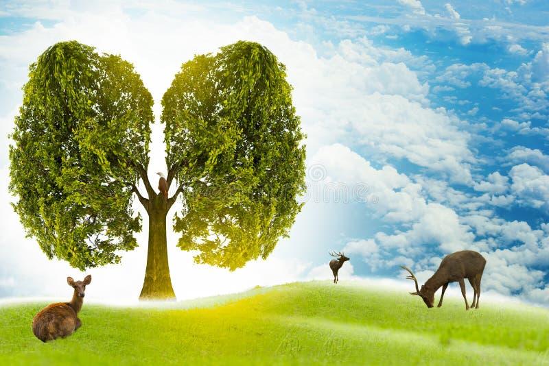 Изображения зеленого цвета легкего в форме дерев, медицинские концепции, аутопсия, дисплей 3D и животные как элемент бесплатная иллюстрация
