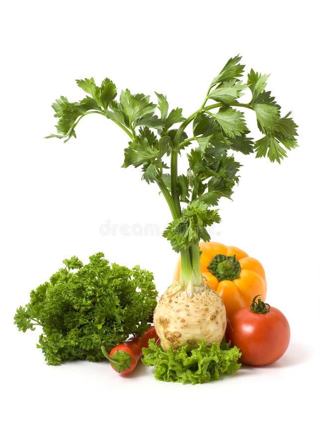 изолировал несколько овощей стоковая фотография