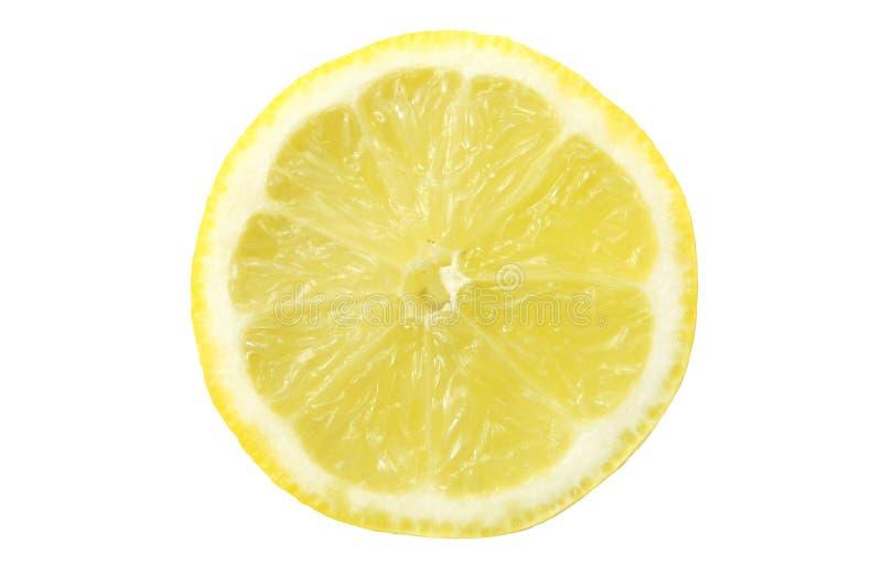 изолированная белизна ломтика лимона стоковое изображение