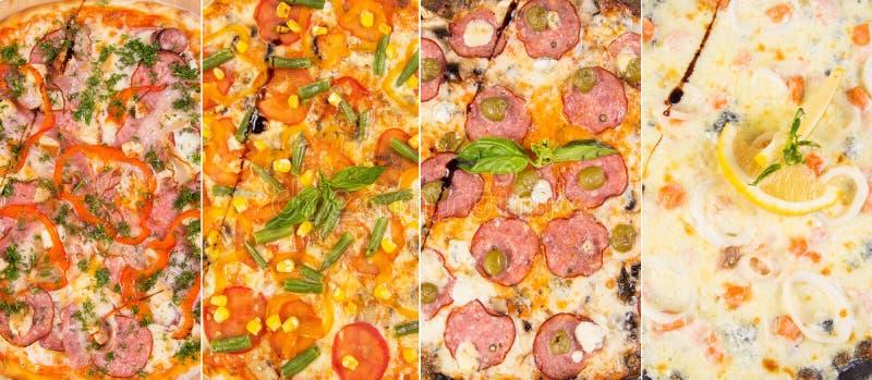 изолированная белизна пиццы стоковые фотографии rf