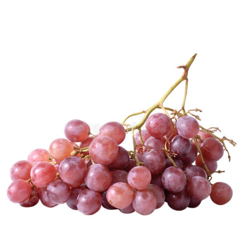 изолированная виноградина плодоовощ стоковое изображение
