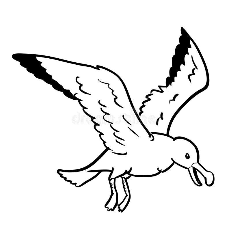 Изолированная иллюстрация Шарж-вектора чайки нарисованная рукой иллюстрация штока
