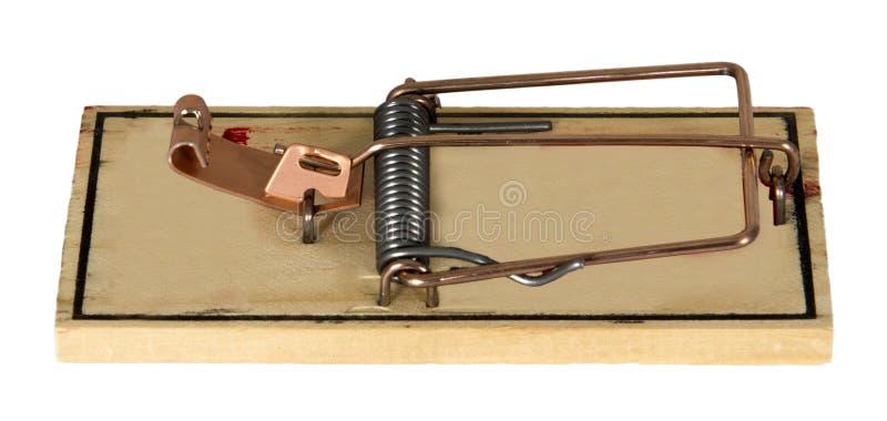 Изолированная ловушка мыши грызуна стоковые фотографии rf