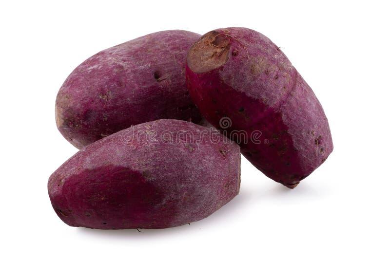 изолированная предпосылкой белизна картошки сладостная стоковые изображения rf