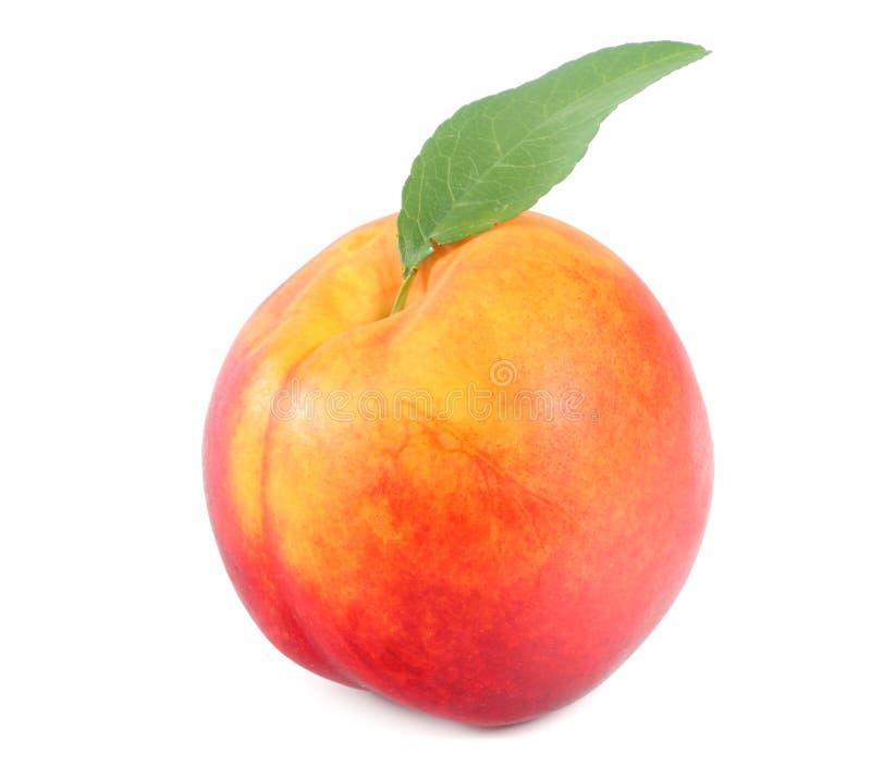 изолированная предпосылкой белизна нектарина еда здоровая стоковые изображения