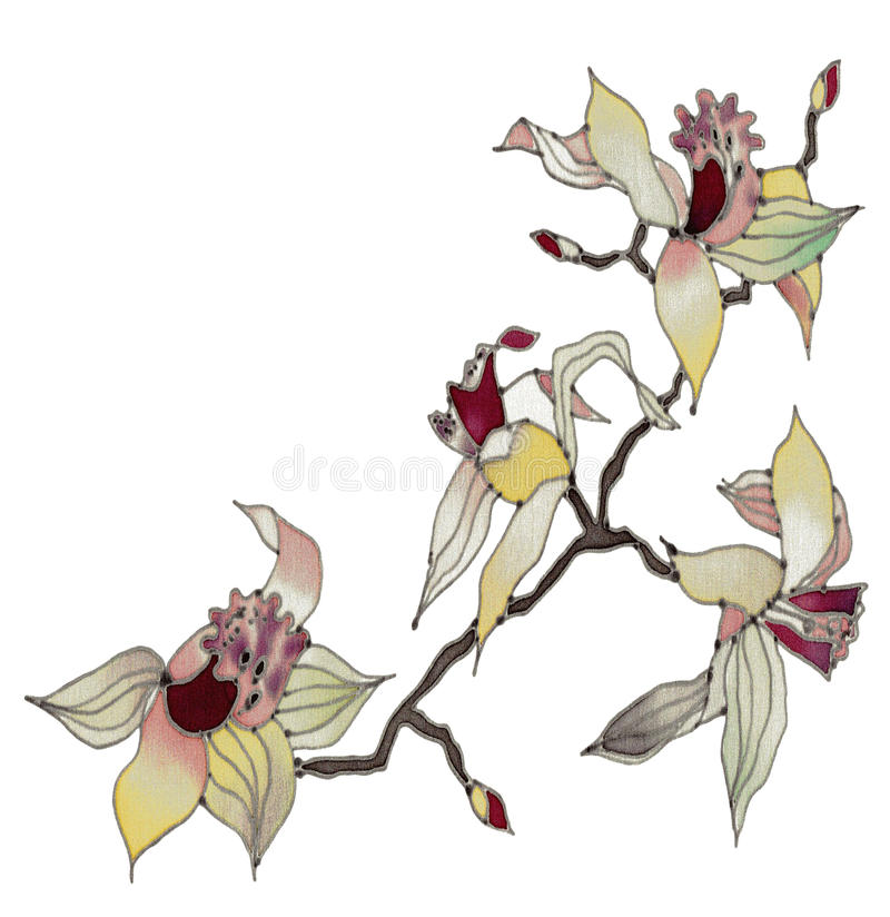 изолированная предпосылкой белизна орхидеи бесплатная иллюстрация
