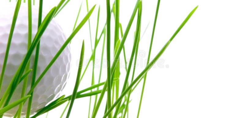 изолированная трава гольфа шарика стоковое фото