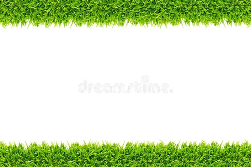 изолированная трава рамки стоковое фото rf