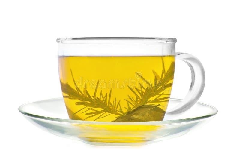 Изолированная чашка зеленого чая стоковые изображения rf