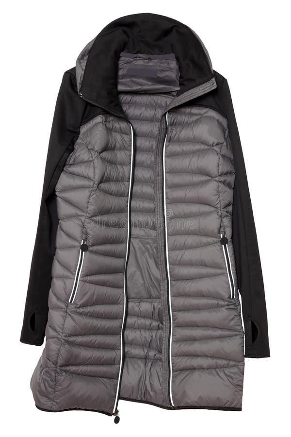 Изолированное пальто женщины Изолированное пальто спуска стильных женщин серое теплое стоковые фото