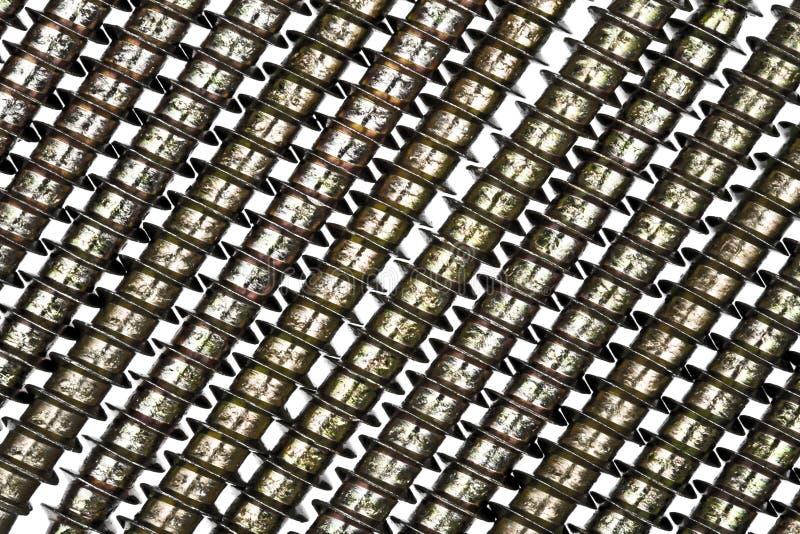 изолированные винты белые стоковое фото rf
