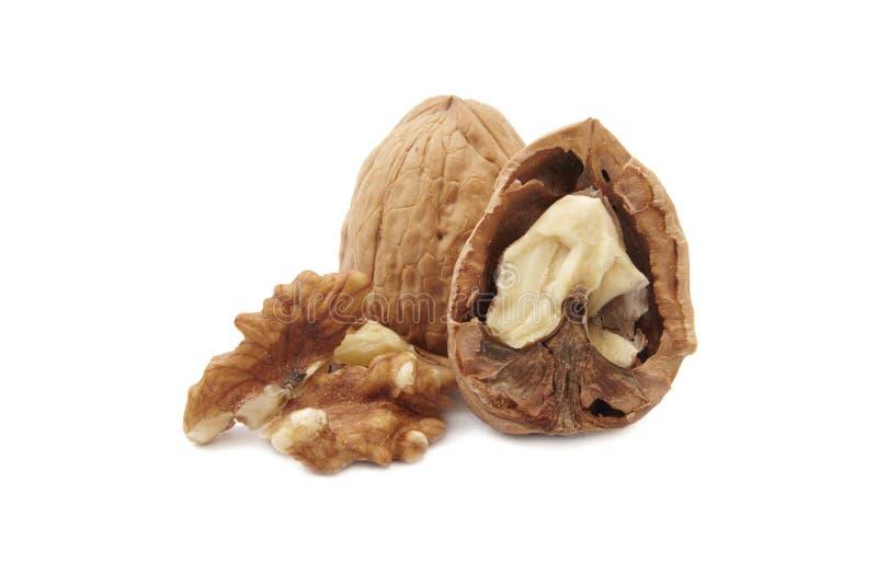 изолированные грецкие орехи стоковые фотографии rf