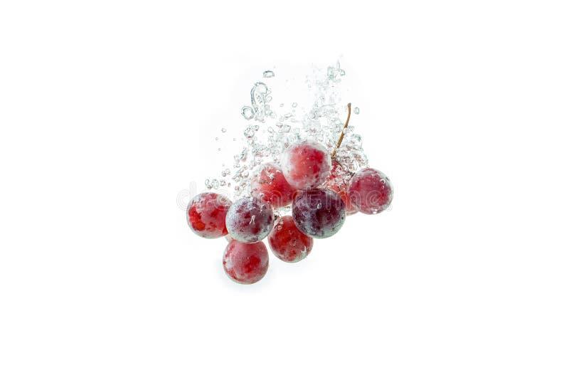 Изолированные красные виноградины брызгая и тонуть в воду на белую предпосылку стоковое фото