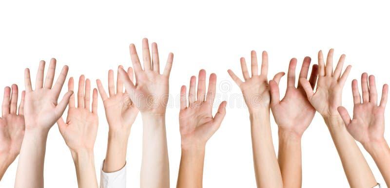изолированные руки стоковое фото