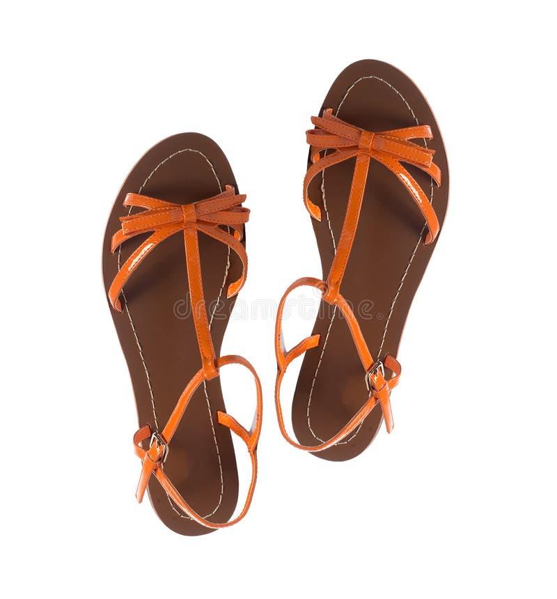 Изолированные сандалии женщины лета стоковое фото