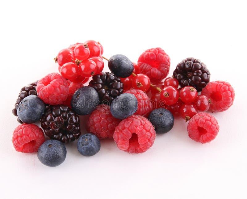 изолированные ягоды стоковые фотографии rf