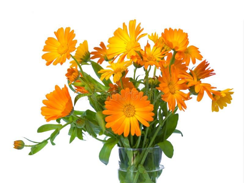 Изолированный букет цветка лета, стоковые фото