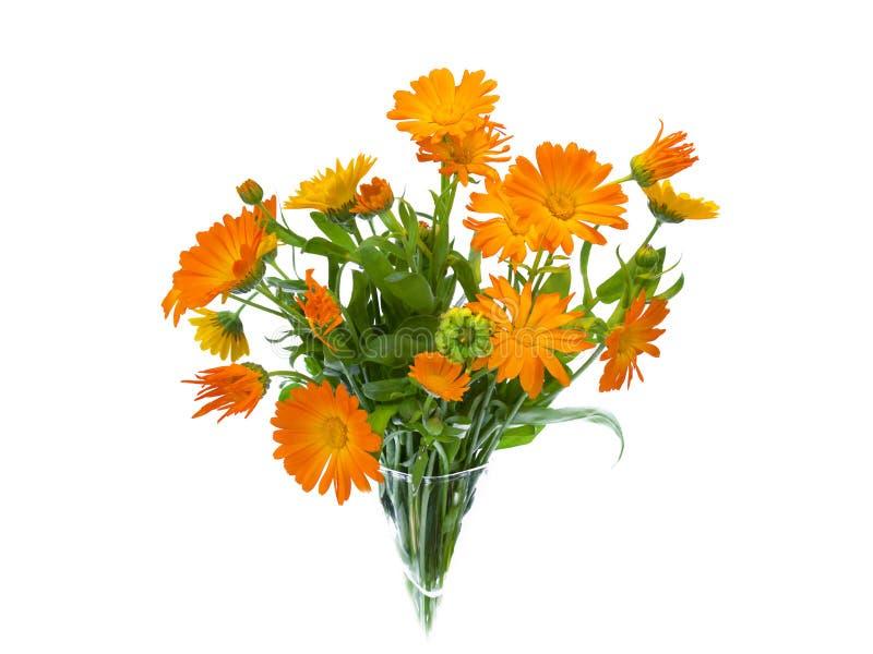 Изолированный букет цветка лета, стоковое изображение rf